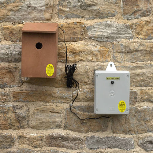 Wireless Bird Box Camera - Battery Powered