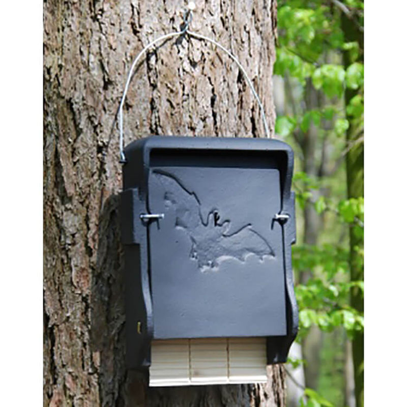 Buy schwegler 1ff bat box at garden gift shop for Bat box obi