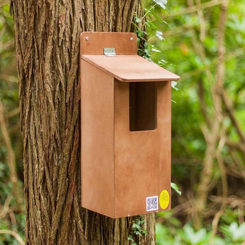 Buy Little Owl Nest Box From Garden Gift Shop