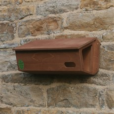 Swift Nest Box