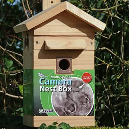 Multi Species Feeder Nest box and camera