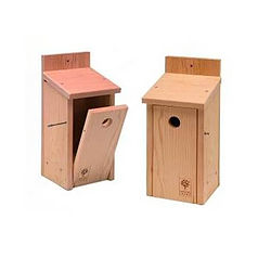 Solid Cedar Modern Bird Box