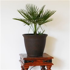 "Kiri Garden Planter 15"" Lightweight Plant Pot"