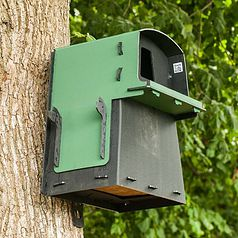 Eco Barn Owl Nest Box