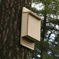 Bat Box Wooden DIY Kit