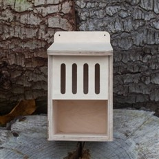 Bug Box Wooden Self Assembly Insect House