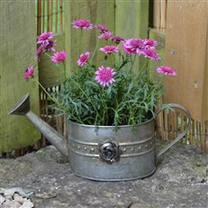 Decorative Watering Can Planter
