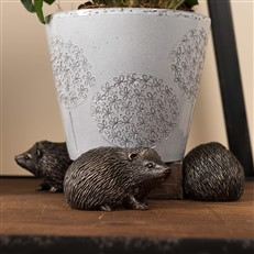 Hedgehog Plant Pot Risers