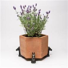 Horse Head Plant Pot Feet
