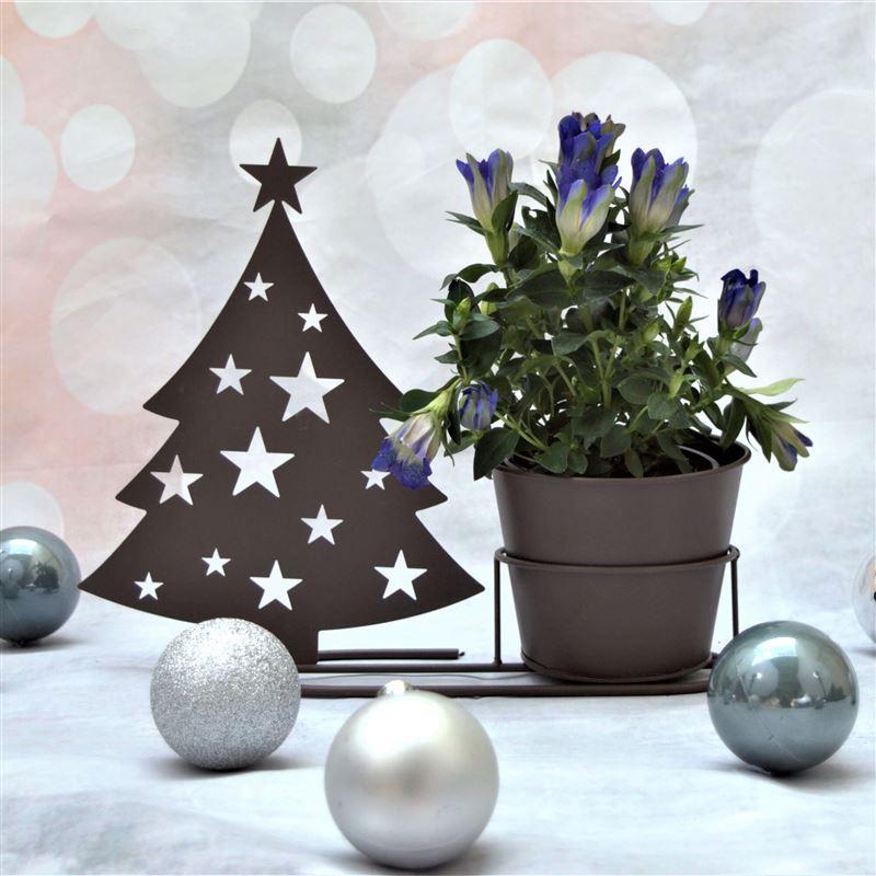 Christmas Tree In Garden: Christmas Tree Silhouette Plant Pot