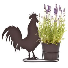 Cockerel Silhouette Plant Pot