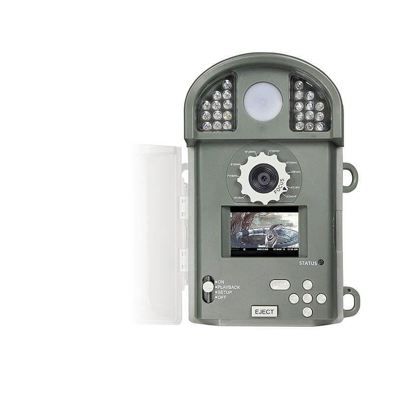 digital bird camera bird cameras digital bird feeder